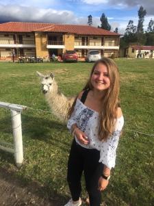 Erste Alpaca (kommen noch mehr!)