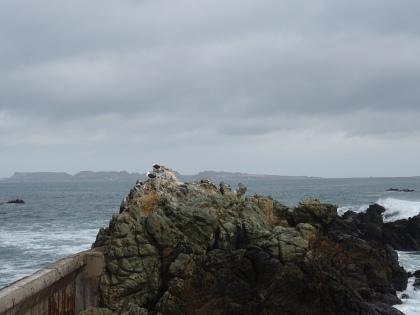 Punta Choro